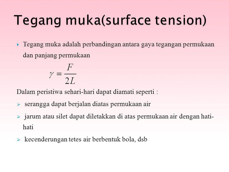 Tegang muka(surface tension)