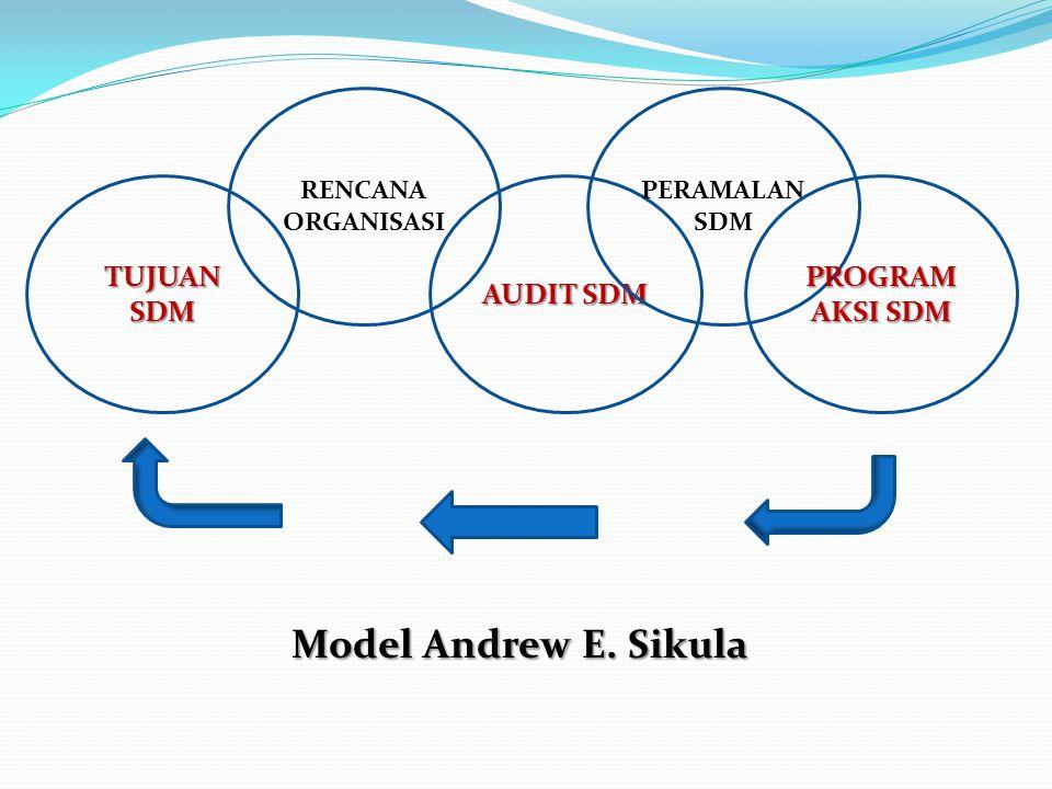 Model Andrew E. Sikula TUJUAN SDM AUDIT SDM PROGRAM AKSI SDM