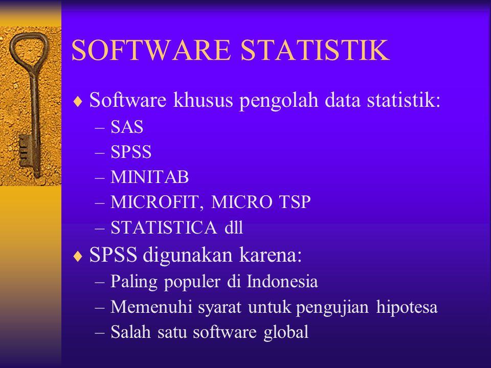SOFTWARE STATISTIK Software khusus pengolah data statistik: