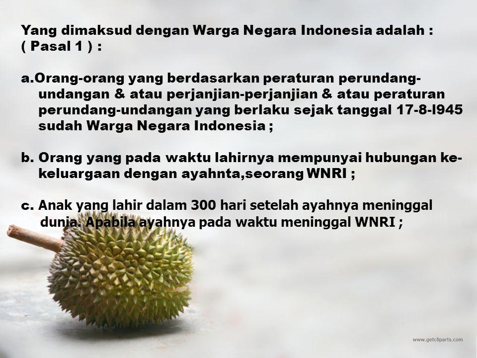 Yang dimaksud dengan Warga Negara Indonesia adalah :