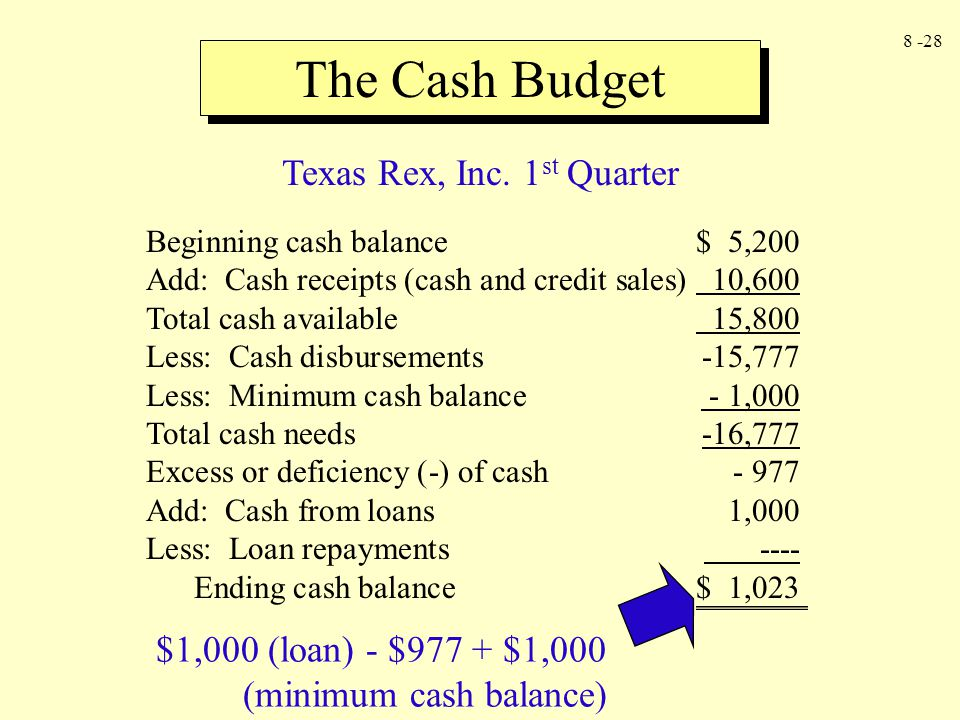 Texas Rex, Inc. 1st Quarter
