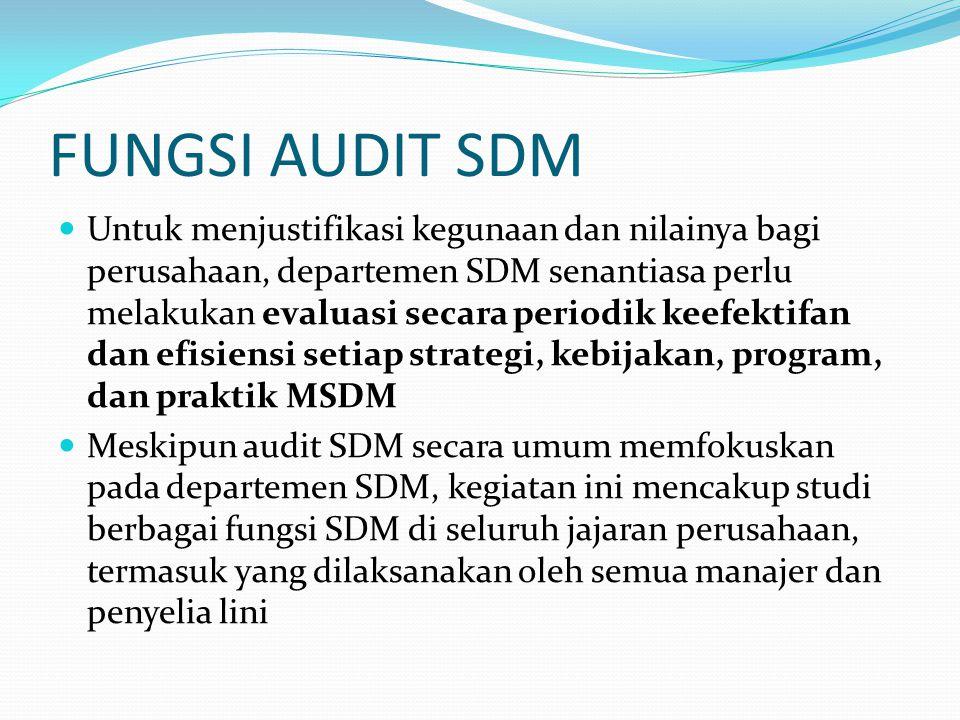 FUNGSI AUDIT SDM