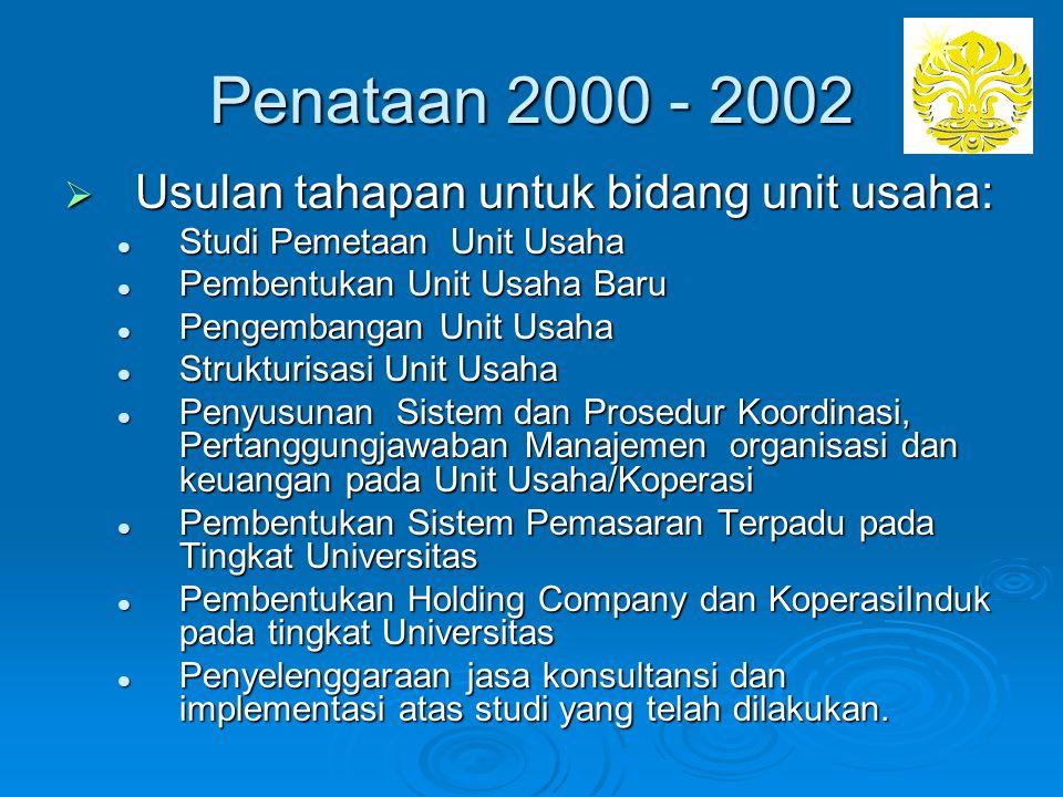Penataan 2000 - 2002 Usulan tahapan untuk bidang unit usaha: