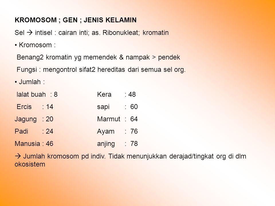 KROMOSOM ; GEN ; JENIS KELAMIN