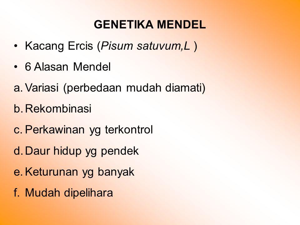 GENETIKA MENDEL Kacang Ercis (Pisum satuvum,L ) 6 Alasan Mendel. Variasi (perbedaan mudah diamati)