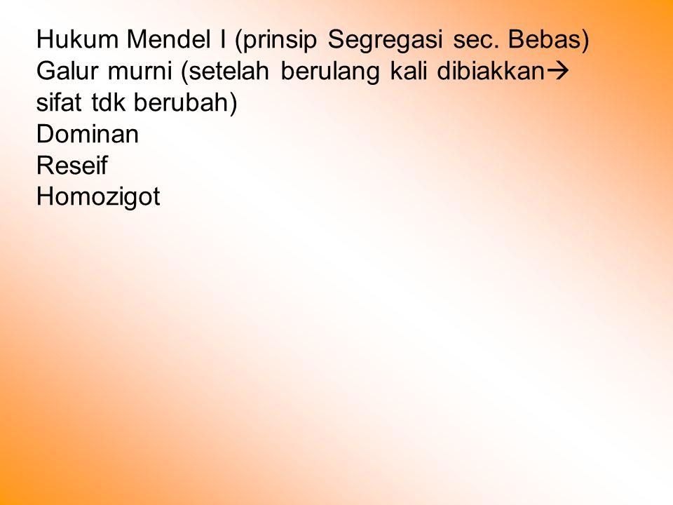 Hukum Mendel I (prinsip Segregasi sec. Bebas)
