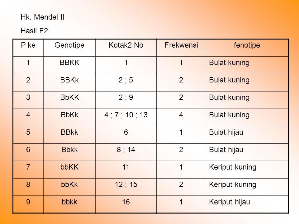 Hk. Mendel II Hasil F2. P ke. Genotipe. Kotak2 No. Frekwensi. fenotipe. 1. BBKK. Bulat kuning.