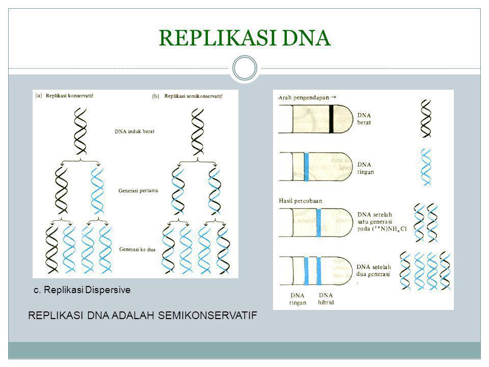 REPLIKASI DNA ADALAH SEMIKONSERVATIF