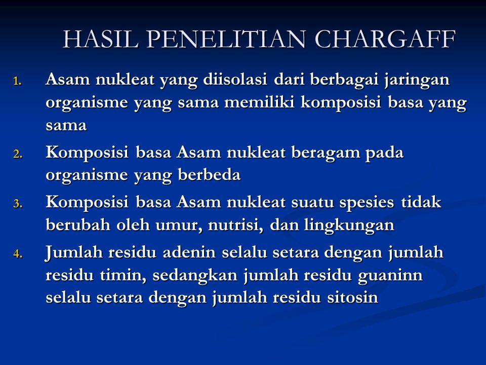 HASIL PENELITIAN CHARGAFF