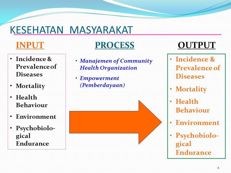 KESEHATAN MASYARAKAT INPUT PROCESS OUTPUT