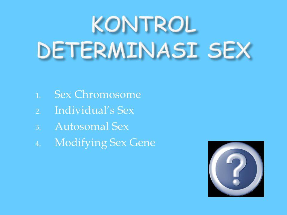 KONTROL DETERMINASI SEX