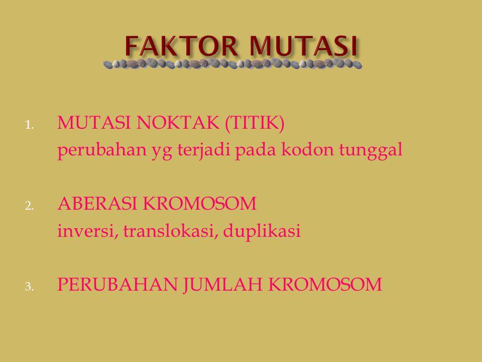 FAKTOR MUTASI MUTASI NOKTAK (TITIK)