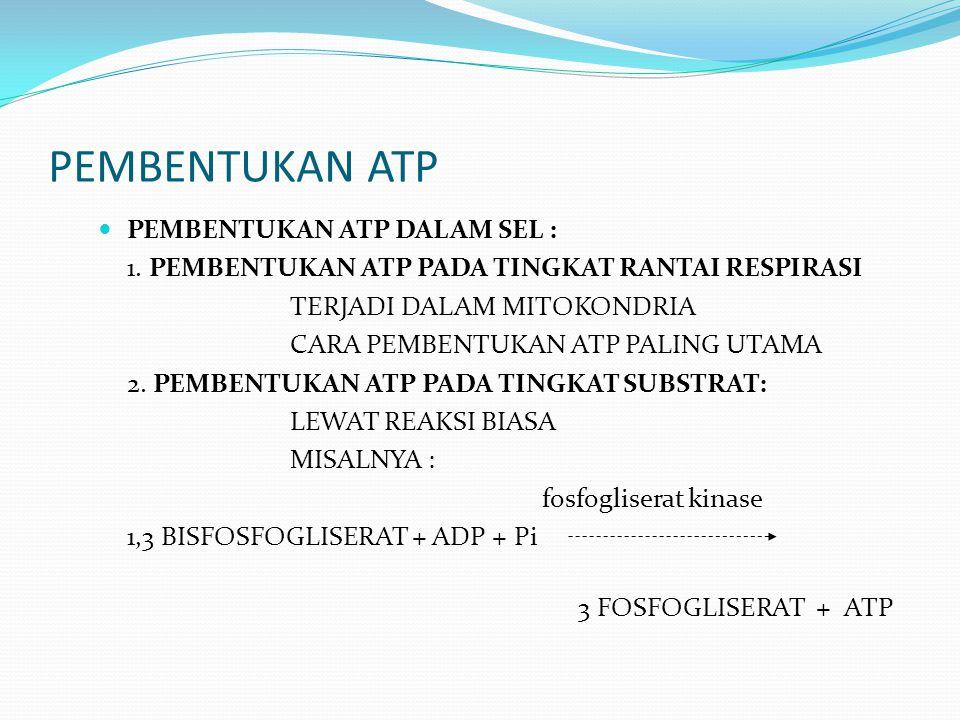PEMBENTUKAN ATP PEMBENTUKAN ATP DALAM SEL :