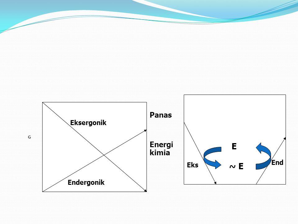 Panas Energi kimia Eksergonik G E End Eks ~ E Endergonik