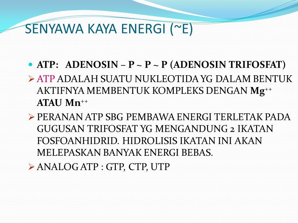 SENYAWA KAYA ENERGI (~E)