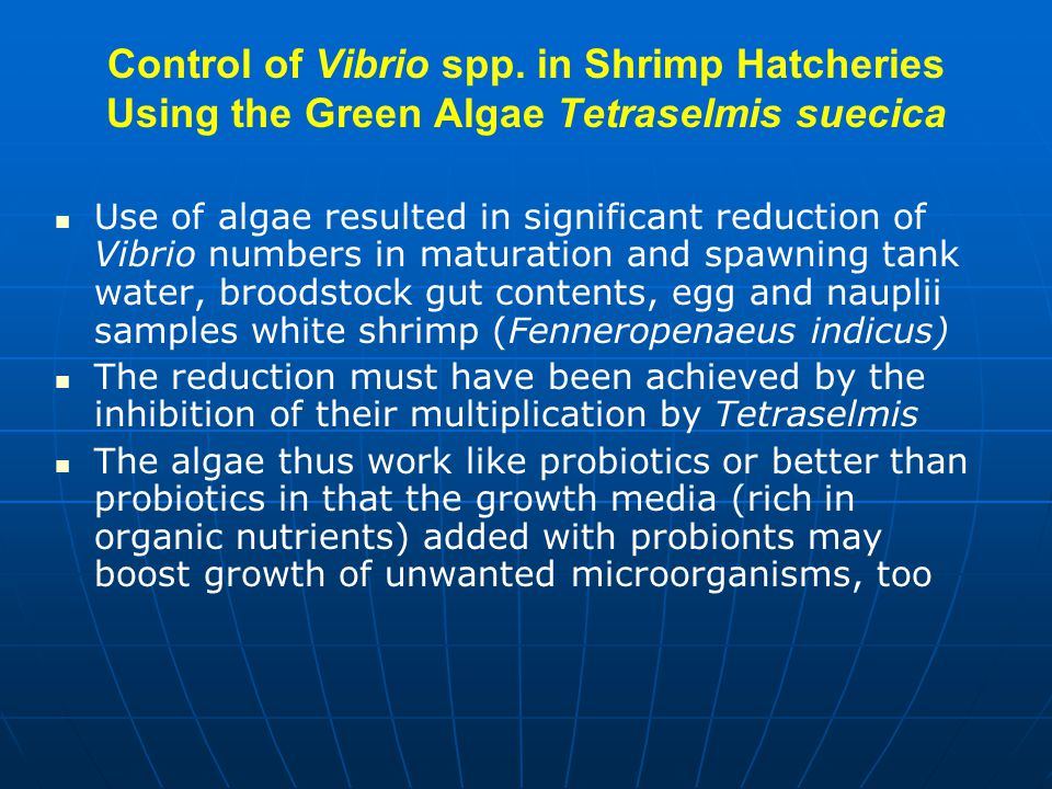 Control of Vibrio spp. in Shrimp Hatcheries Using the Green Algae Tetraselmis suecica