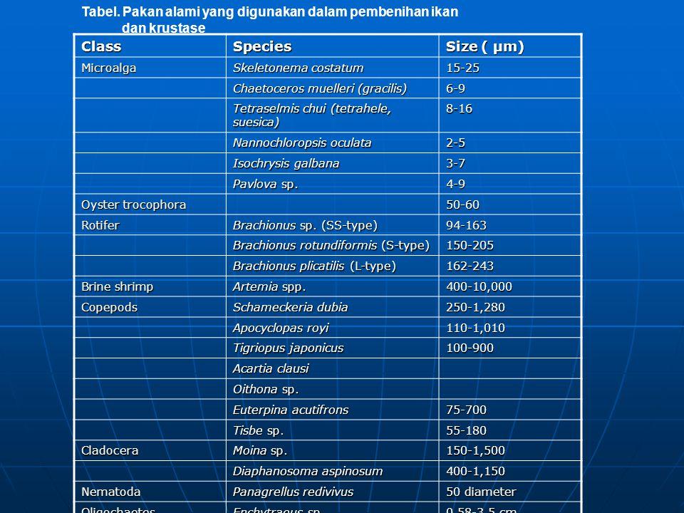 Tabel. Pakan alami yang digunakan dalam pembenihan ikan dan krustase