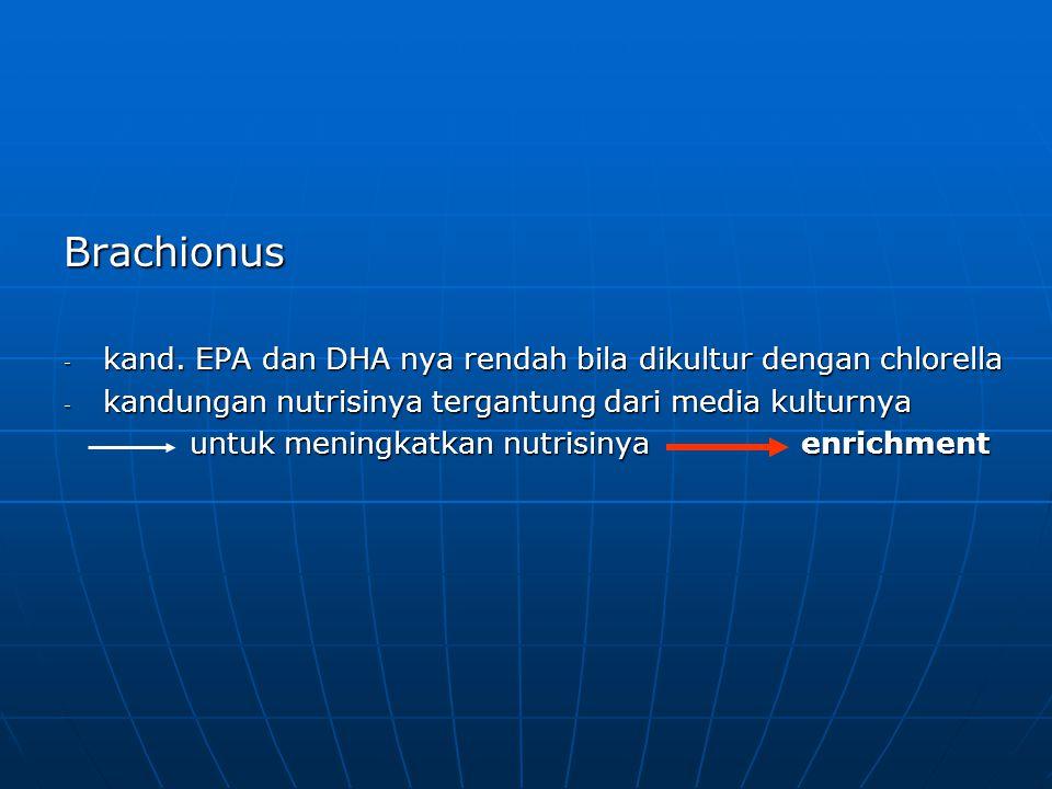Brachionus kand. EPA dan DHA nya rendah bila dikultur dengan chlorella