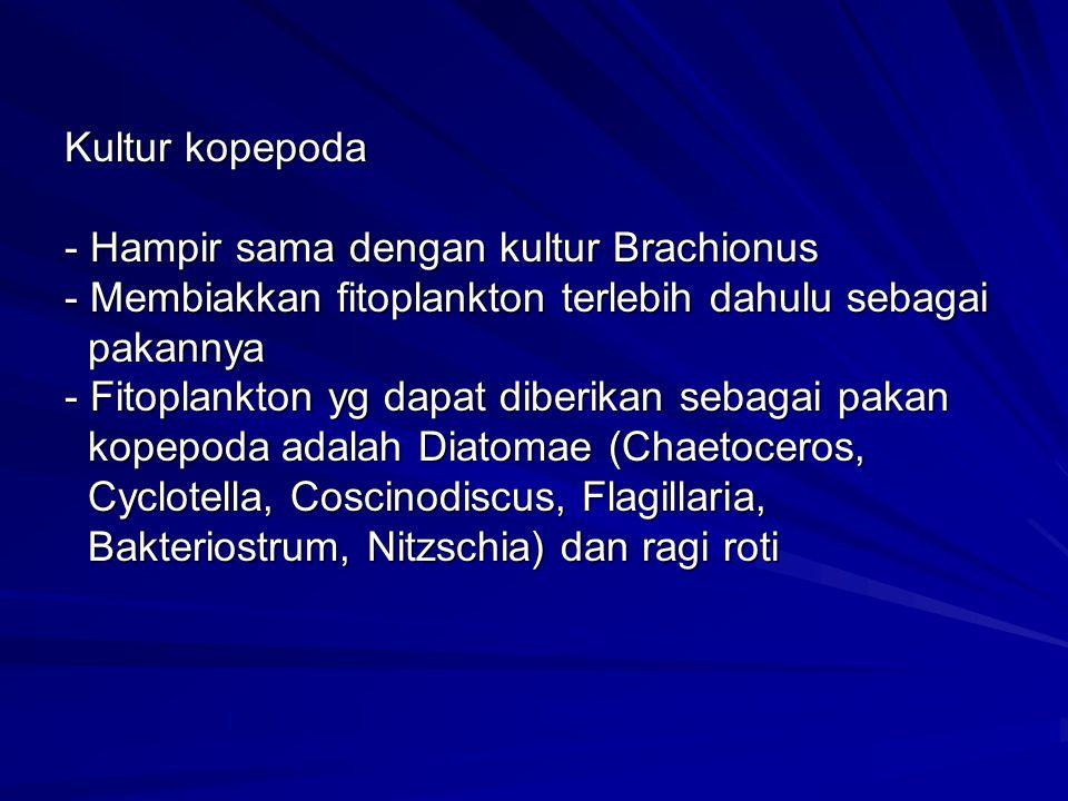 Kultur kopepoda - Hampir sama dengan kultur Brachionus - Membiakkan fitoplankton terlebih dahulu sebagai pakannya - Fitoplankton yg dapat diberikan sebagai pakan kopepoda adalah Diatomae (Chaetoceros, Cyclotella, Coscinodiscus, Flagillaria, Bakteriostrum, Nitzschia) dan ragi roti