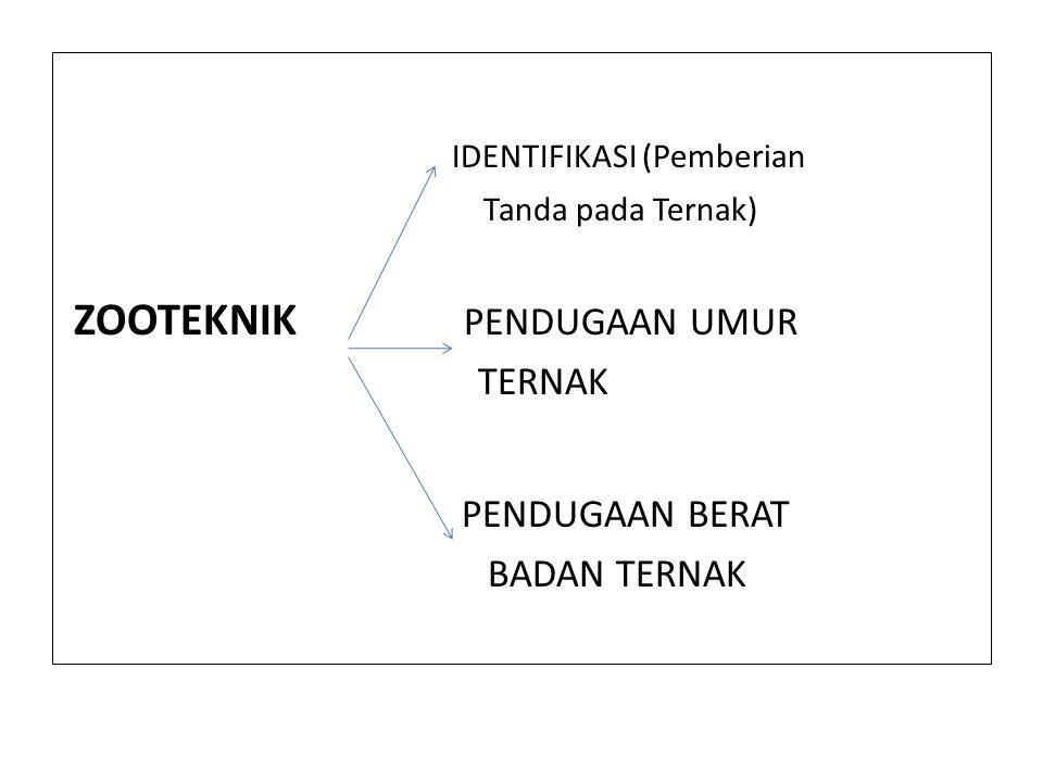 IDENTIFIKASI (Pemberian