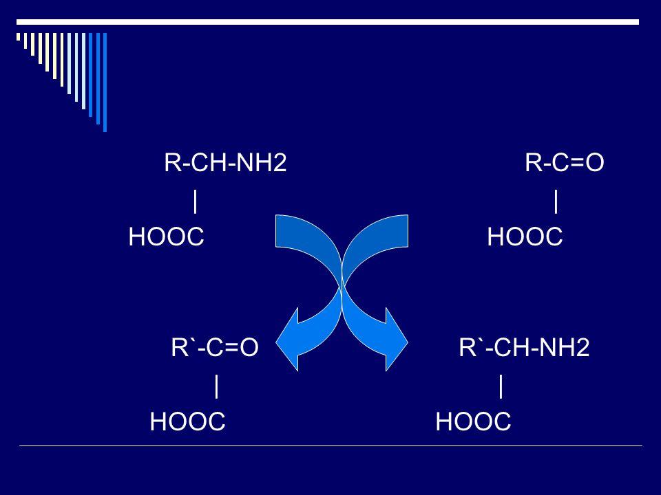 R-CH-NH2 R-C=O | | HOOC HOOC. R`-C=O R`-CH-NH2.