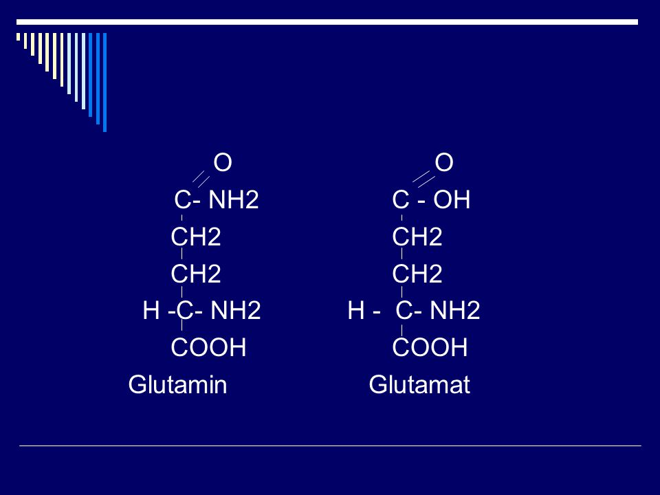 O O C- NH2 C - OH CH2 CH2 H -C- NH2 H - C- NH2 COOH COOH Glutamin Glutamat