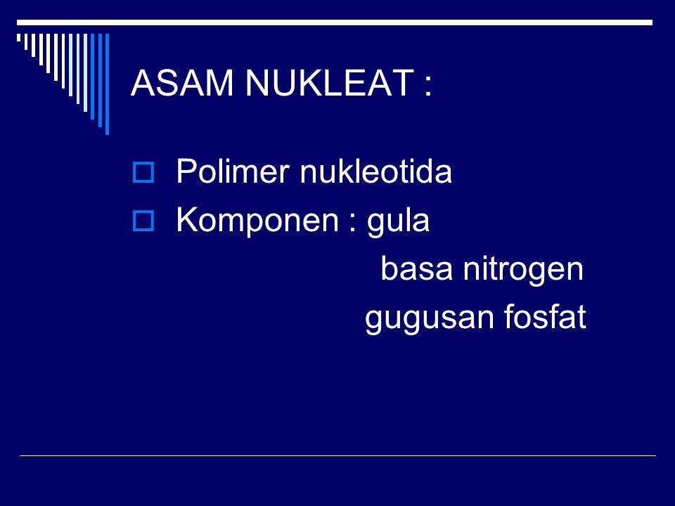 ASAM NUKLEAT : Polimer nukleotida Komponen : gula basa nitrogen