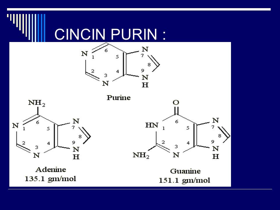 CINCIN PURIN :