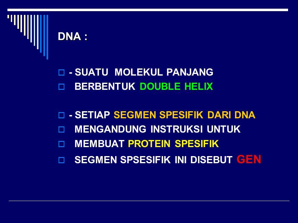 DNA : - SUATU MOLEKUL PANJANG BERBENTUK DOUBLE HELIX