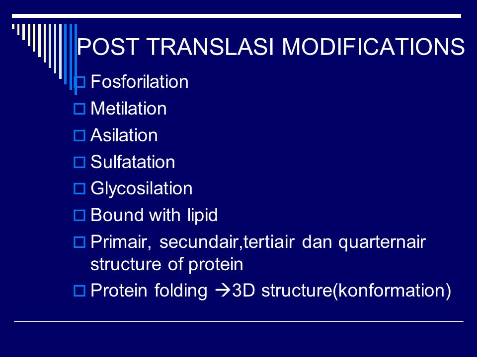 POST TRANSLASI MODIFICATIONS