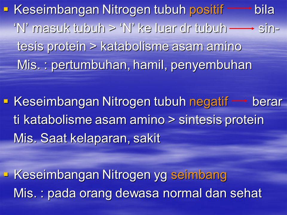 Keseimbangan Nitrogen tubuh positif bila