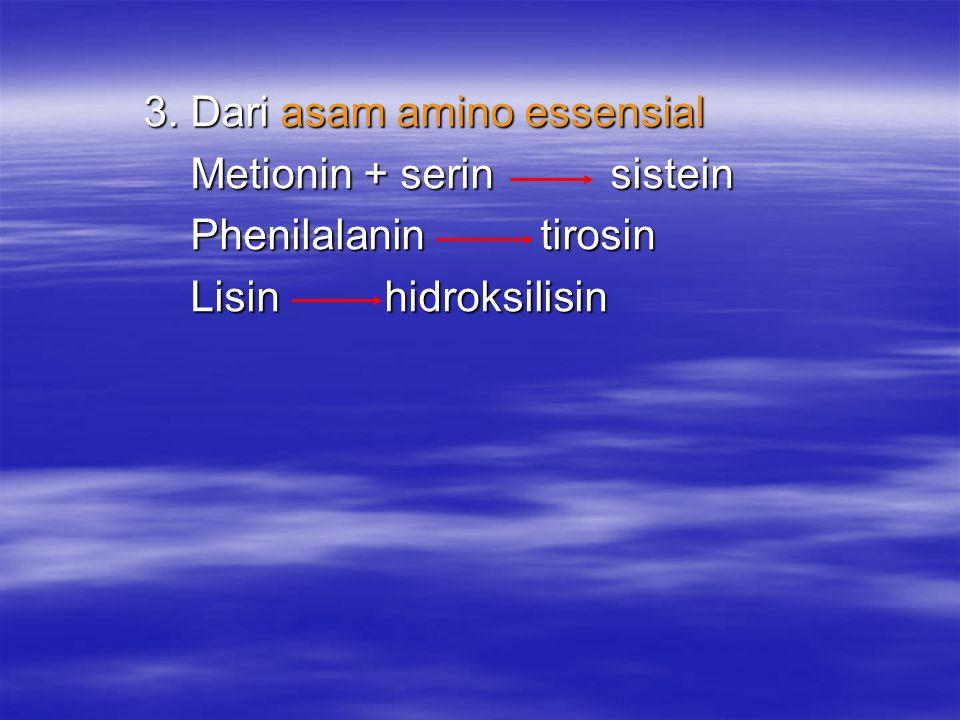 3. Dari asam amino essensial