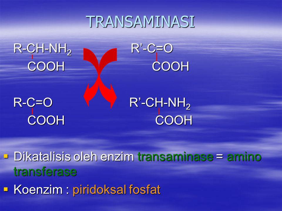 TRANSAMINASI R-CH-NH2 R'-C=O COOH COOH R-C=O R'-CH-NH2 COOH COOH