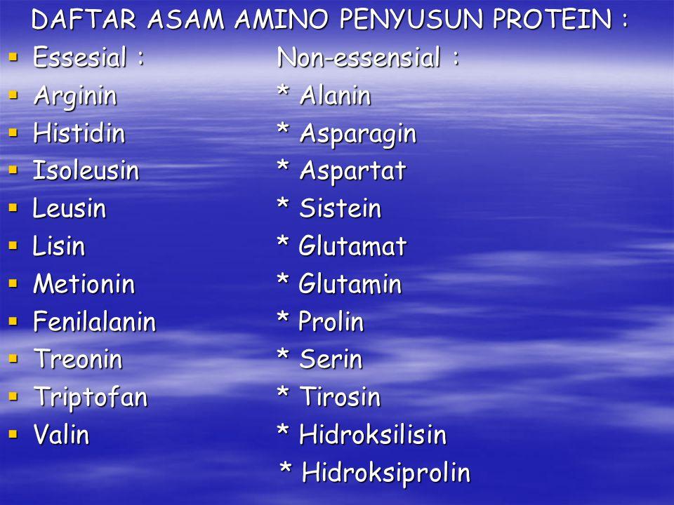 DAFTAR ASAM AMINO PENYUSUN PROTEIN :