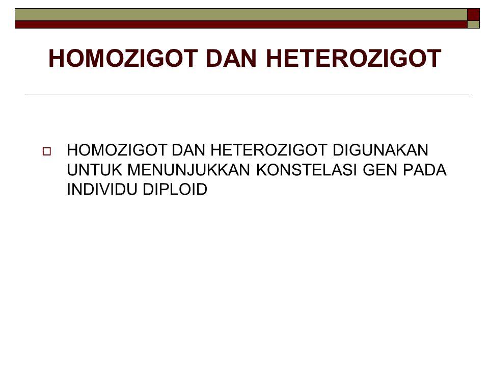 HOMOZIGOT DAN HETEROZIGOT