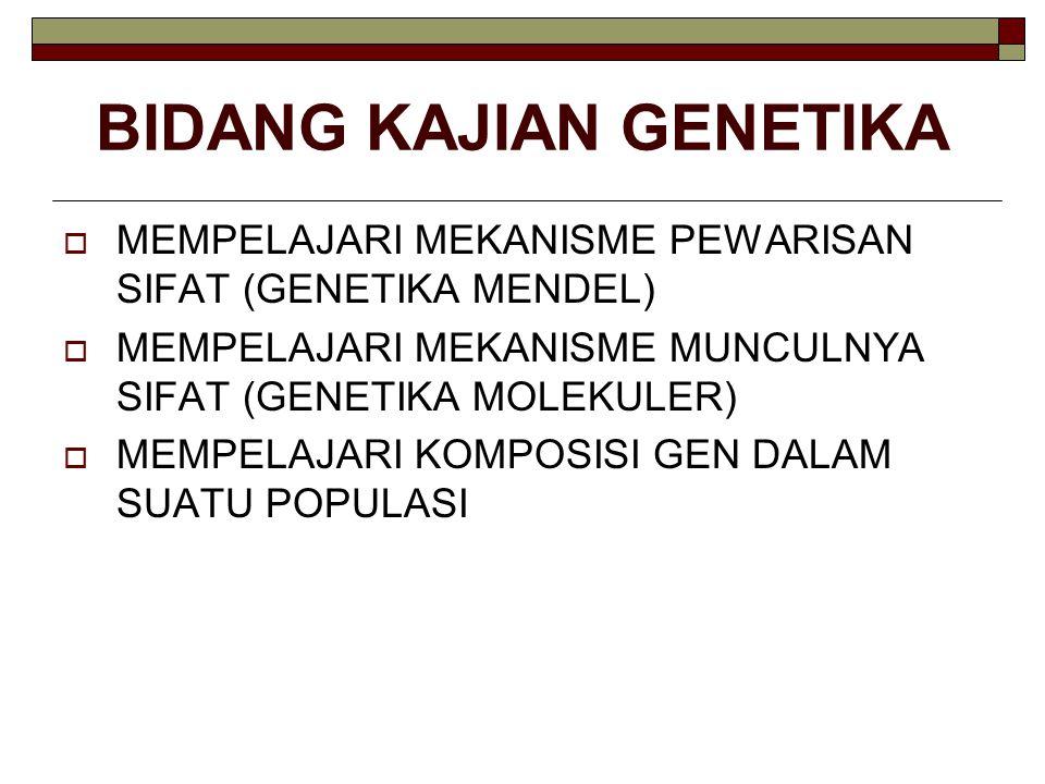BIDANG KAJIAN GENETIKA