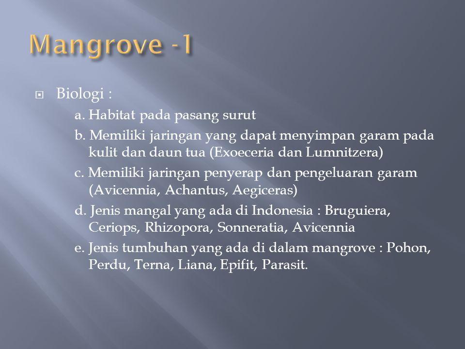 Mangrove -1 Biologi : a. Habitat pada pasang surut