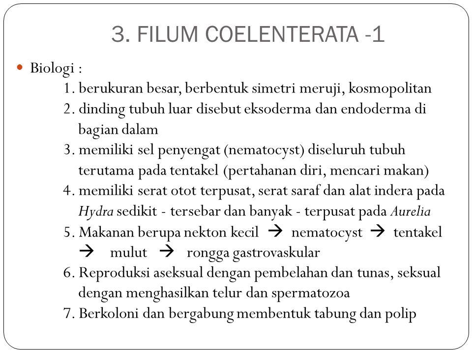 3. FILUM COELENTERATA -1 Biologi :