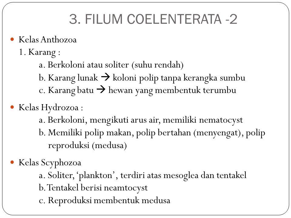 3. FILUM COELENTERATA -2 Kelas Anthozoa 1. Karang :