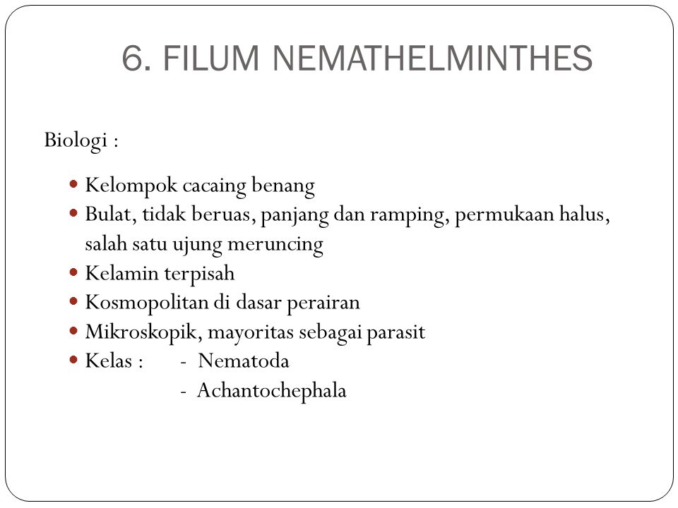 6. FILUM NEMATHELMINTHES