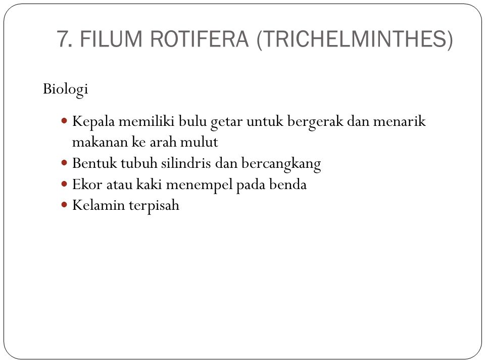 7. FILUM ROTIFERA (TRICHELMINTHES)