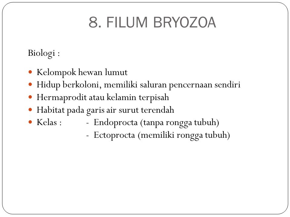 8. FILUM BRYOZOA Biologi : Kelompok hewan lumut