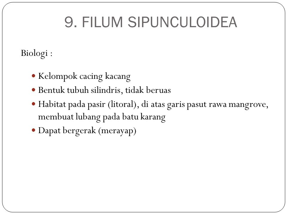 9. FILUM SIPUNCULOIDEA Biologi : Kelompok cacing kacang