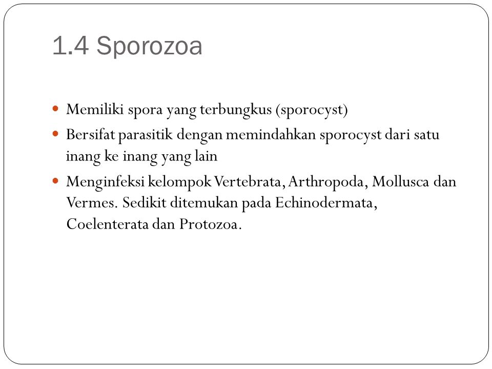 1.4 Sporozoa Memiliki spora yang terbungkus (sporocyst)