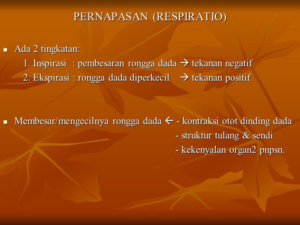 PERNAPASAN (RESPIRATIO)