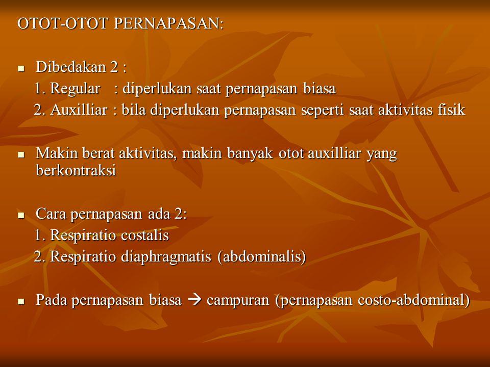OTOT-OTOT PERNAPASAN: