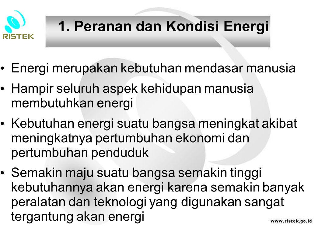 1. Peranan dan Kondisi Energi