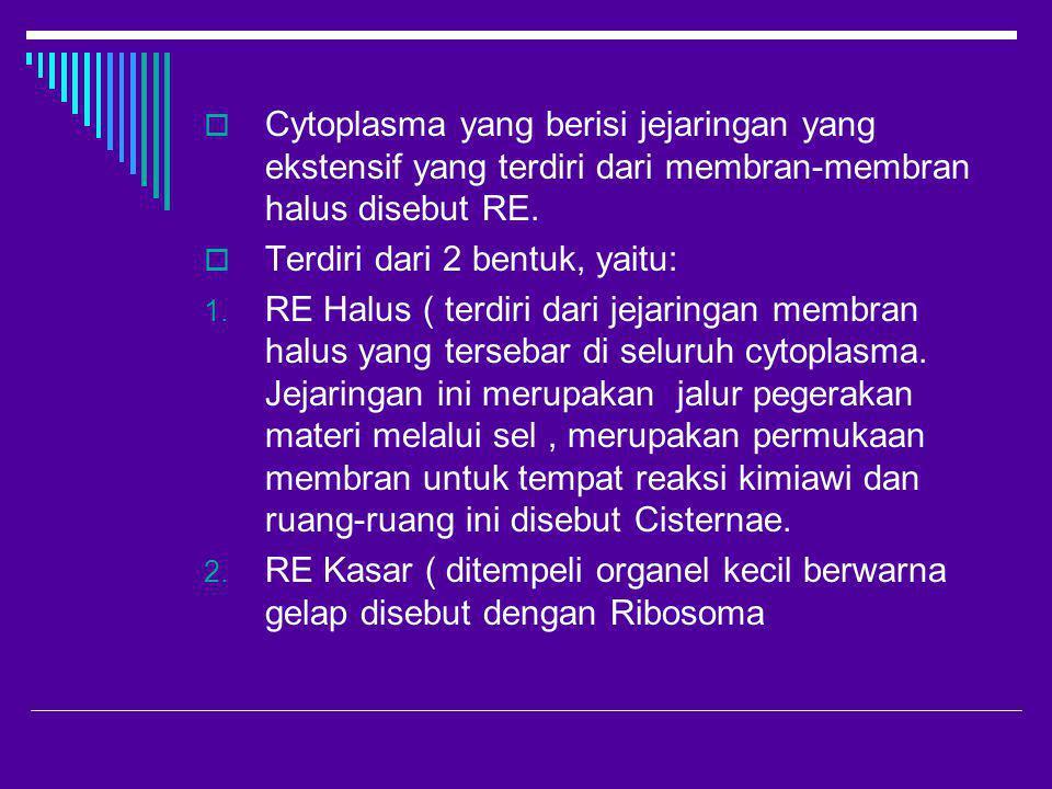 Cytoplasma yang berisi jejaringan yang ekstensif yang terdiri dari membran-membran halus disebut RE.