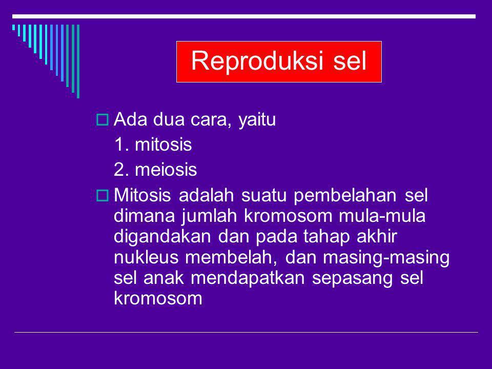 Reproduksi sel Ada dua cara, yaitu 1. mitosis 2. meiosis