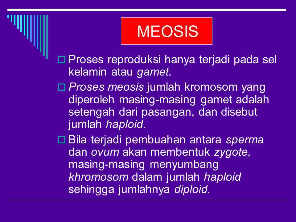 MEOSIS Proses reproduksi hanya terjadi pada sel kelamin atau gamet.